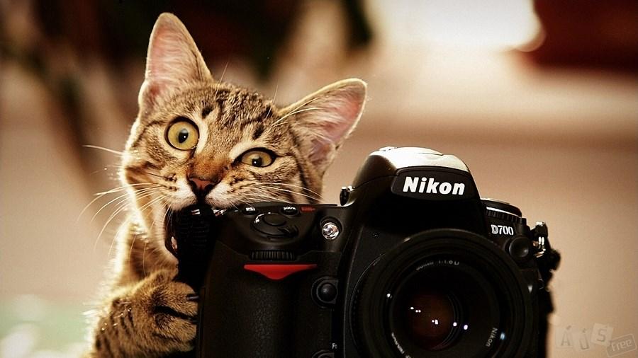 Фотограф - ретушер в Мелитополе