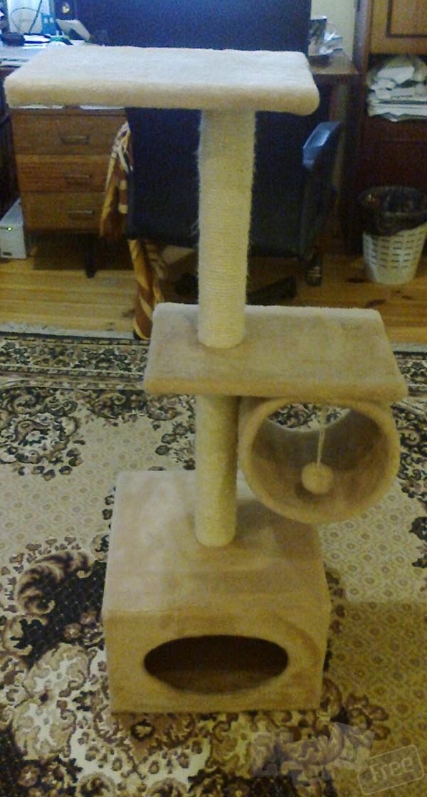 продам почти новую лазанку для котов