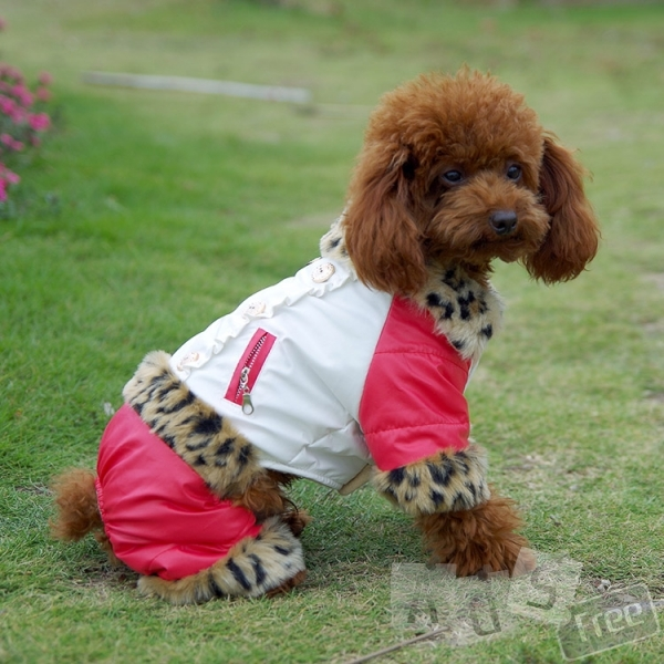 Комбез для маленькой собаки