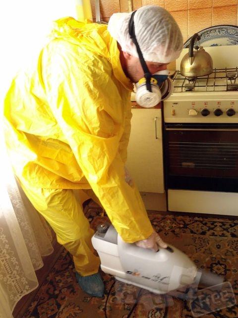 Дезинсекция помещений газом в Киеве