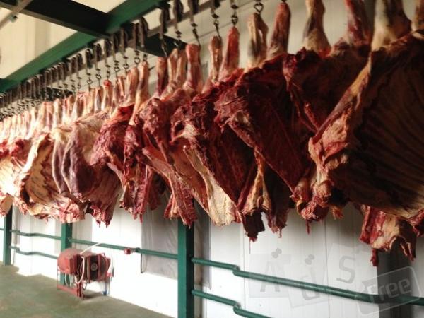 Куплю яловичину у півтуші
