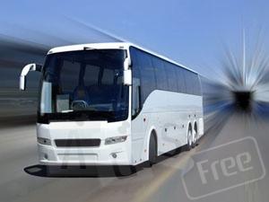 Пассажирские перевозки. Заказ автобусов