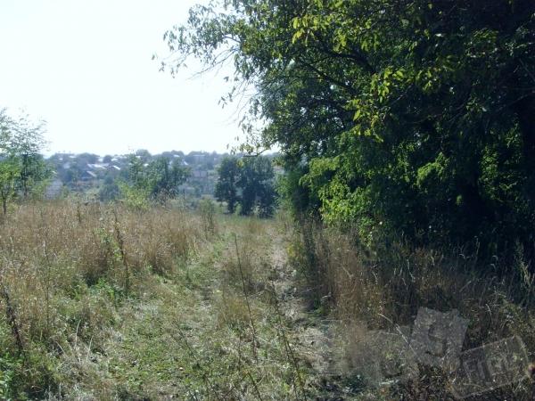 Продам земельну ділянку біля Чернівців