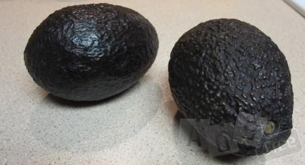 Продам авокадо сорт Хасс