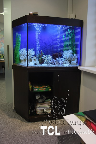 Изготовление аквариумов и террариумов