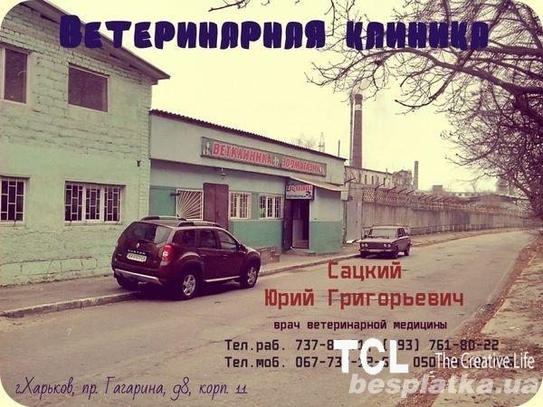 Ветеринар на дом О67 7ЗО57З7 Харьков.