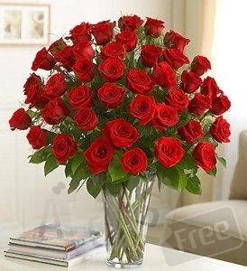 Доставка цветов по Бердянску и району