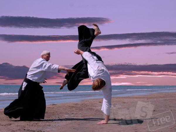 Индивидуальная программа тренировок по боевым искусствам
